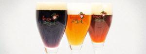Brugse Zot, Beer pipeline, Bruges, brugge, de halve maan